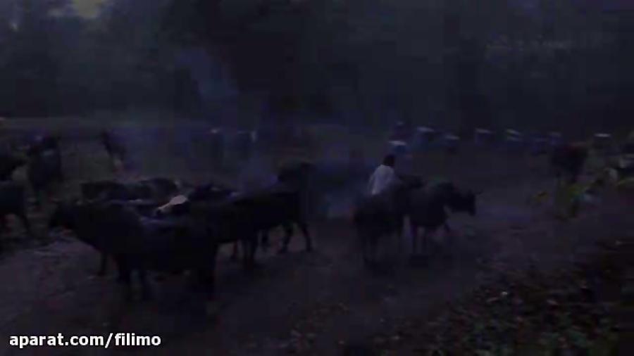 آنونس فیلم مستند «تووکل»