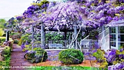 Magnificent Colors of Wisteria  HD1080p