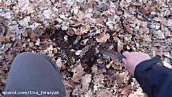 Metal Detecting ...With Some Balls!