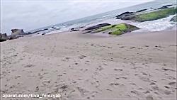 Beach Metal Detecting RINGS 7/16/18