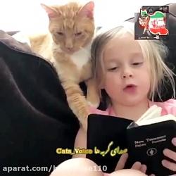 پیشول کتاب دوست!