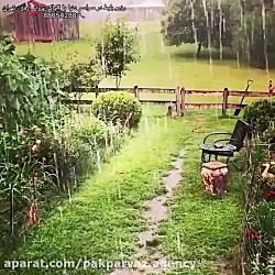 بارون زیبا