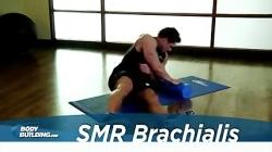 آموزش حرکت کشش عضله باز...