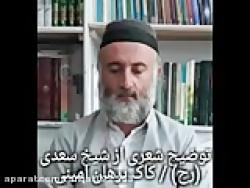 توضیح شعری از شیخ سعدی (رح)  کاک برهان امینی