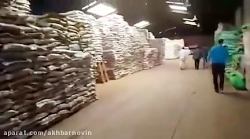 کشف ده ها تن برنج، عدس در یک انبار احتکار کالا در تهران
