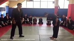 آموزش دفاع شخصی،نینجوتسو
