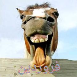 طالع بینی حیوانات خنده ...