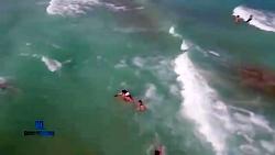 نجات جان شناگران، توسط پهپاد نجات غریق Auxdron