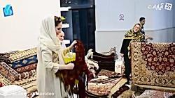 فعالان صنعت فرش دستباف درباره هنر فرشبافی چه می گویند؟