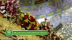 تزئین حرم و ضریح امیرالمومنین علیه السلام به مناسبت عید غدیر + نماهنگ