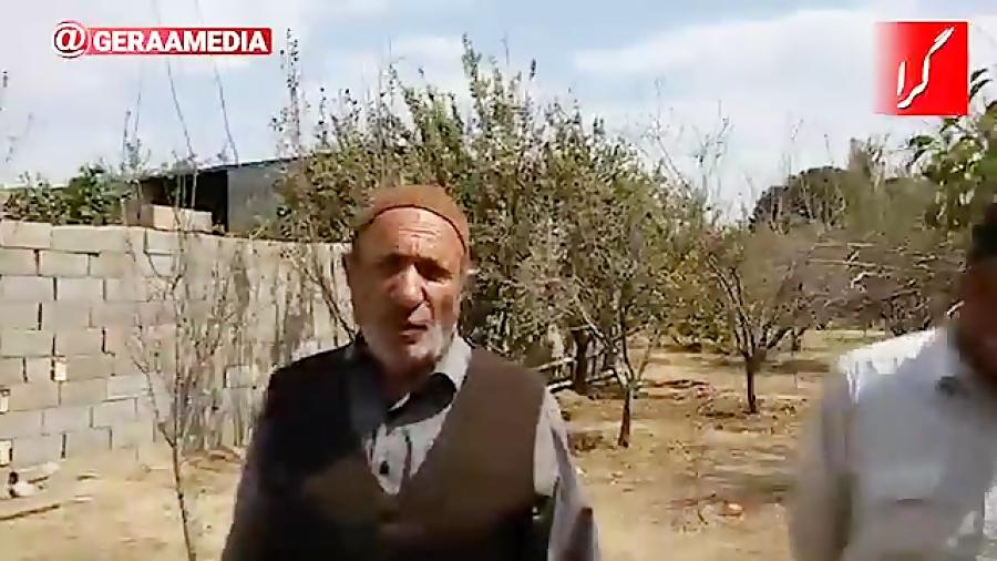 خزان زودرس در باغ های نجف آباد و خمینی شهر