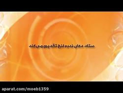 روایتی از فعالیت های ستاد برگزاری دعای ندبه لنج
