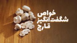 خواص شگفت انگیز قارچ برای سلامتی