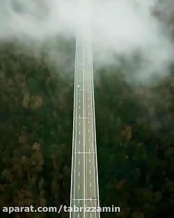 طبیعت ویرجینیا-آمریکا