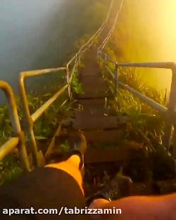 طبیعت هاوایی-هونولو