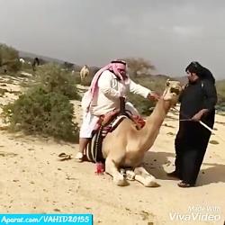 چند کلیپ خنده دار عربی