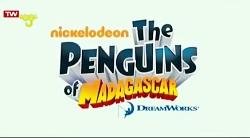 کارتون پنگوئن های زبل د...