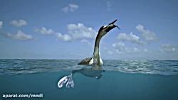 مستند هیولاهای دریا با ...