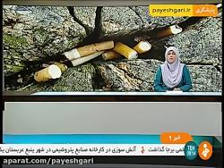 آثار زیانبار تنباکو بر محیط زیست و مرگ و میر انسانها