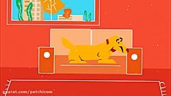 هتل حیوانات خانگی