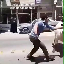 لوله بازکنی تهران.09123554055 تخلیه چاه تهران