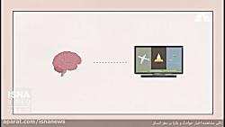 تأثیر مشاهده اخبار حوادث و بلایا بر مغز انسان