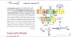 ویدیو آموزش ساختار آمینواسید و پیوند پپتیدی زیست دوازدهم
