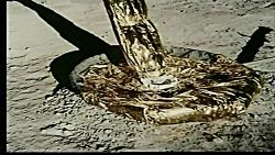 Science proves that NASA faked the moon landings – Moon landing Hoax