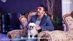 محمدامین_کریم_پور_-_خواستگاری_360