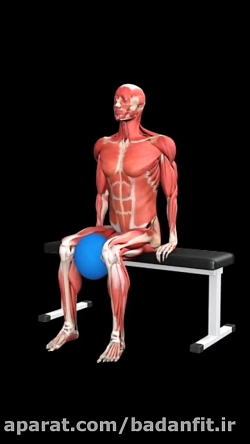 تقویت عضلات داخلی پا با...