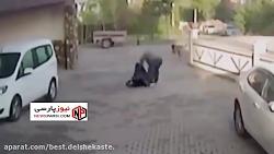 حمله سگ ولگرد به دختربچه