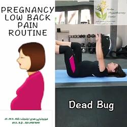 ورزش درمانی مناسب بارداری