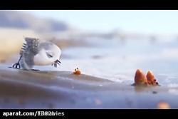 انیمیشن پرنده برنده اس...