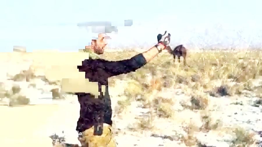 کویر مرنجاب Maranjab Desert