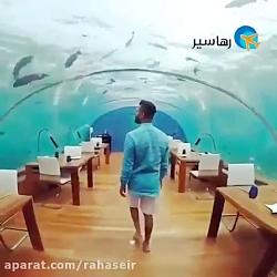 تجربه ای خاص در رستوران زیردریایی مالدیو