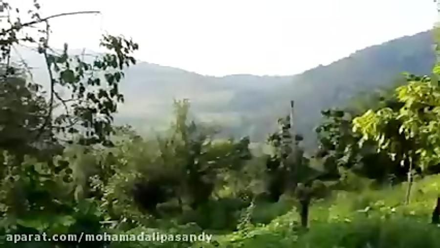 آرامشِ روستا