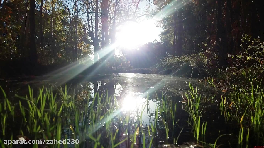 طبیعت شهرستان بانه