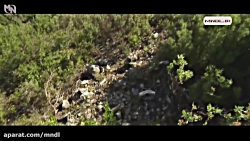 حیات وحش فرانسه با ری میرز با دوبله فارسی - قسمت 3