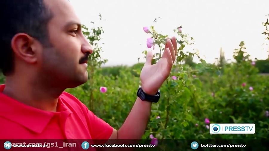 IRAN - Rosewater in Kashan