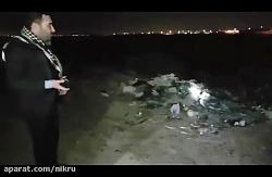 300 سگ توسط شهردار اهواز سوزانده شدند