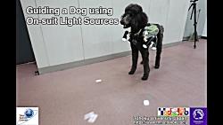 کنترل سگ از راه دور به ک...