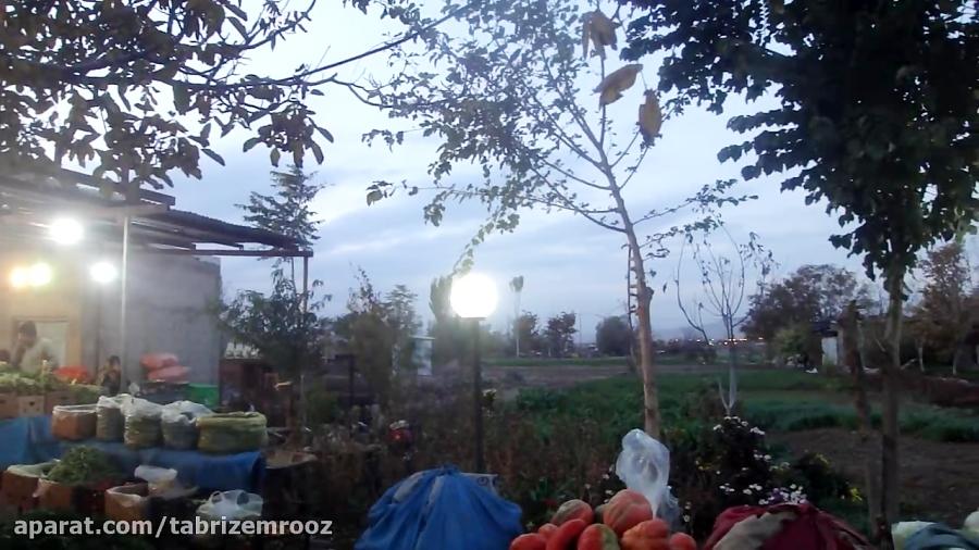 سبزی فروشی در تبریز
