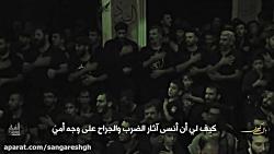نوحه شهادت امام حسن مجتبی (ع) مداحی حاج محمود کریمی و