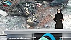 ماجرای سگ کشی اهواز در شبکه مردم خبر