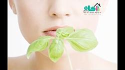 چگونگی درمان گیاهی حساسیت پوستی در طب سنتی