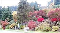 راز خلقت و  طبیعت پاییز...