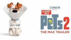 اولین تریلر انیمیشن The Secret Life of Pets 2 - زومجی