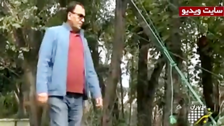 کاشت درختان 40 ساله در گلدان!!!