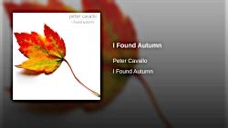 موسیقی بی کلام بسیار غمگین / پیانو / ویولون / پاییز را یافتم