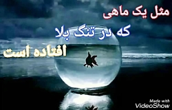 صبح جمعه بخیر، جمعه تنهایی ام، شعر فرشته تشکری، خوانش شیدا حبیبی